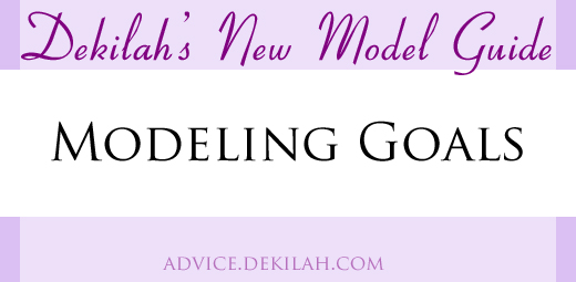 New Model Guide: Your Modeling Goals